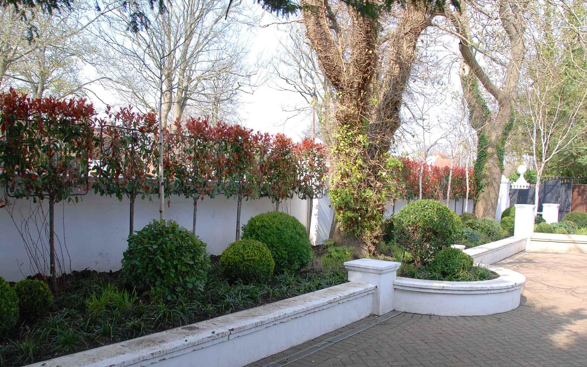 best garden designer in brighton